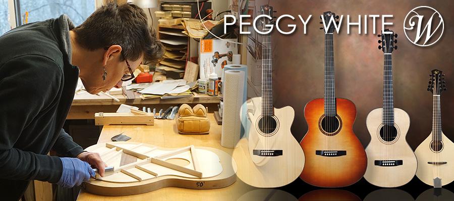 Blue-G] Fine Acoustic Guitar S...